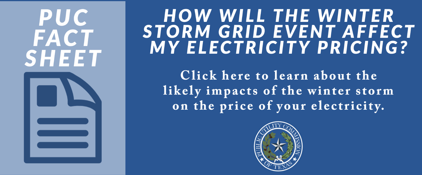 Link to Electricity Prices during the 2021 Winter Storm